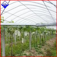 Wholesale PP Spunbond Nonwoven Agriculture Crop Cover Cloth , Non Woven Weed Control Fabric from china suppliers