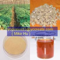 Wholesale American Ginseng Root Extract from china suppliers