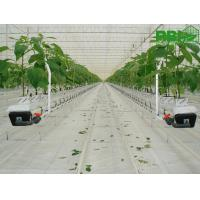 China Beautiful Agricultural Glass Greenhouse , Commercial Greenhouse Structures Wind Load 120KM/H on sale