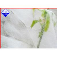 Wholesale Anti UV Agricultural Recyclable PP Non Woven Fabric For Weed Control / Landscape from china suppliers