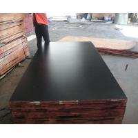 Mm  marine plywood