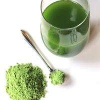 Wholesale WheatGrass Powder 200g in aluminum bag Pure Whole Leaf from china suppliers