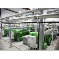 Wholesale 500KW - 4MW Landfill Gas Power Plant , Renewable Energy Sources Electric Plant from china suppliers