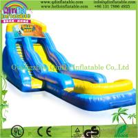 Inflatable Water Slides Adults 17