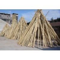 China Bamboo Pole on sale