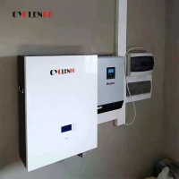 Wholesale 6000 Cycle 16S 5kwh 51.2v 100ah 48 Volt Lithium Ion Battery from china suppliers