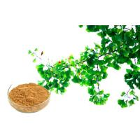 Wholesale CONBA Ginkgo Biloba Extract For Improving Mental Performance from china suppliers