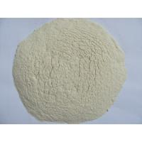 Wholesale Dehydrated Garlic Flakes/Granules/Powder for Different Specification from china suppliers