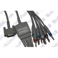 Wholesale HP one piece 10-lead ECG cable with leadwire from china suppliers