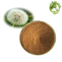 China Weight Loss Supplement 100% Natural Organic Dandelion Root Extract/Dandelion Root Powder on sale