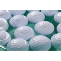 Wholesale range golf ball/ two piece golf ball/2PC Golf practice ball/golf ball from china suppliers