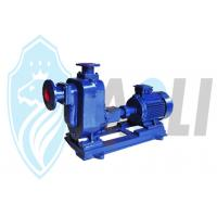 China Submersible Horizontal Self Priming Pumps Water Lifting For Agriculture Irrigation on sale