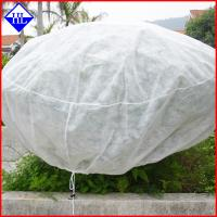 Wholesale Spunbonded Non Woven Weed Control Fabric Mat For Plant Freeze / Frost Protection from china suppliers
