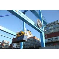 Wholesale Fast International Shipping Forwarder Sea Routes China To Canada / European Cargo Services from china suppliers