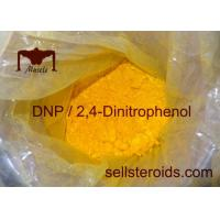 mesterolone only