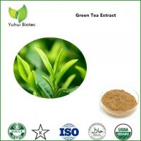 Wholesale green tea extract,green tea extract powder,bio green tea extract,green tea extract egcg from china suppliers