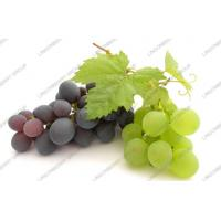 Wholesale Grape juice powder from china suppliers