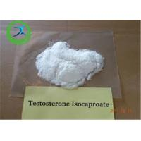 Wholesale Anabolic Steroid CAS 15262-86-9 Testosterone Isocaproate Powder for Bodybuilding from china suppliers