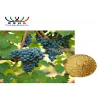 China 5% Viniferin Red Grape Skin Extract , Grape Vine Extract Anti Inflammation on sale
