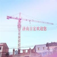 Wholesale Tower Crane QTZ63 from china suppliers