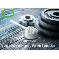Wholesale High Quality Bodybuilding Powder CAS 57-85-2 Testosterone Propionate from china suppliers