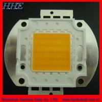 Wholesale RoHS Passed 50W Integrated White High Power LED from china suppliers