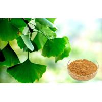 Wholesale Pharmaceutical Grade Ginkgo Biloba Extract For Health Care Products from china suppliers