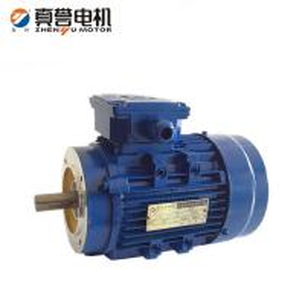 Air Compressor Electrical Motor Of Item 102212610