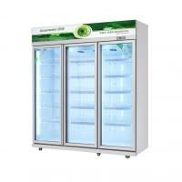 China Large Capacity Glass Door Commercial Beverage Cooler Round Interior Corners For Easy Cleaning on sale