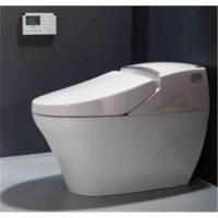 Wholesale Electronic bidet from china suppliers