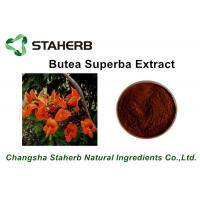 Wholesale Brown Powder Herbal Extract Ratios Butea superba extract Beta-Sitosterol 10:1 By TLC from china suppliers
