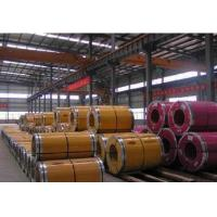 Quality SGS Mild Carbon Steel Plate Q195 Q235 SS400 ST52 HR Hot Rolled Steel Coil for sale