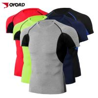 Wholesale Quick Dry Custom Rash Guard , Surf Rash Guard Plus Size Compression T Shirt from china suppliers
