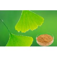 Wholesale Auxiliary Hypolipidemic Ginkgo Biloba Extract With GCAP Planting Base from china suppliers