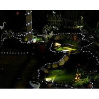 Wholesale 100 LED Solar LED Rope light for garden pool decoration from china suppliers
