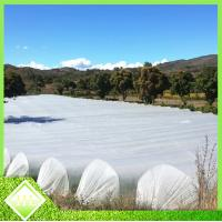 Wholesale Anti UV PP Spunbonded Agriculture Non Woven Fabric For Plant Keeping Temperature from china suppliers