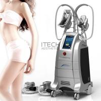 Wholesale Body Slimming And Shaping Cryolipolysis 2 Handles Fat Freezing Machine Weight Losing Slimming Machine from china suppliers