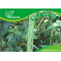 Wholesale Commercial Green Organic yard long bean seeds with thick flesh from china suppliers