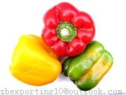 Wholesale Capsicum Extract from china suppliers