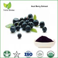 China Acai Berry Extract,acai powder bulk,acai berry extract 20:1,acai berry powder brazil on sale
