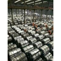 Wholesale Hot Dip Galvanized Steel Coils , Carbon Steel Galvanized Hot Rolled Steel Coil For Container Plate from china suppliers