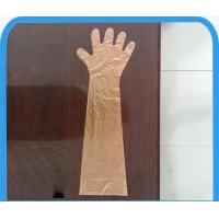Wholesale Transparent / Colorful PE Disposable Veterinary Gloves , Long Sleeve Waterproof Gloves from china suppliers