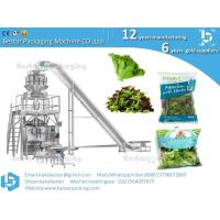 Wholesale Bestar efficiency feeding weighing packaging machine for Special Abrabic salad  mixed salad tabbouleh pouch from china suppliers