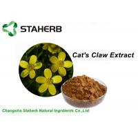Quality Yellow Brown Powder Herbal Extract Ratios , Cat's Claw Extract  P.E 5/1 10/1 20/1 TLC / HPLC for sale