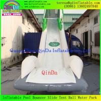 Wholesale Enjoy Giant Inflatable Water Slide For Adult, Inflatable Toy, Adults Inflatable Slide from china suppliers