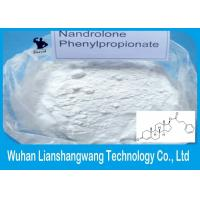 nandrolone phenyl propionate only cycle