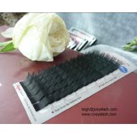 Wholesale C curls eyelash extension on tray,Y lash,W lashes,0.20mm,0.15mm,mink from china suppliers