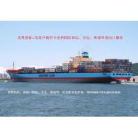 China LCL sea freight rates from Shenzhen/Shanghai/Guangzhou to CHENNAI TEL:15816869172 on sale