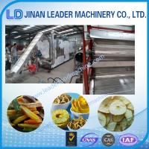 Super quality machine for drying fruits food machine jinan factory