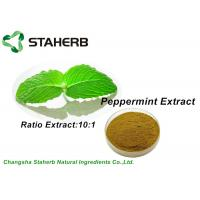 Wholesale Pure Nature Organic Peppermint Leaf Extract Brown Powder 10/1 Ratio By TLC from china suppliers